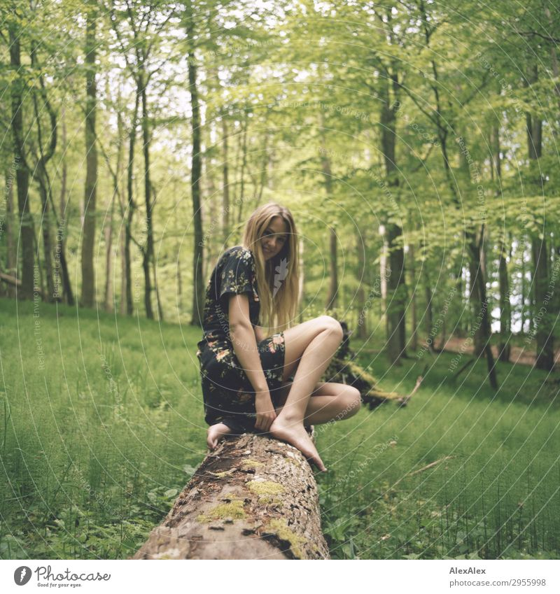Young woman on a tree trunk in the forest Style Joy pretty Life Trip Youth (Young adults) Legs 18 - 30 years Adults Nature Landscape Spring Summer