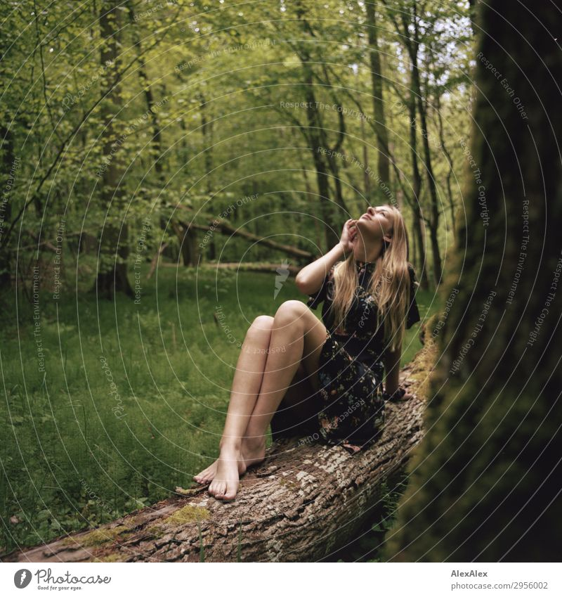 Young woman in summer dress barefoot on a tree trunk in the forest Style pretty Life Harmonious Youth (Young adults) Legs 18 - 30 years Adults Nature Landscape