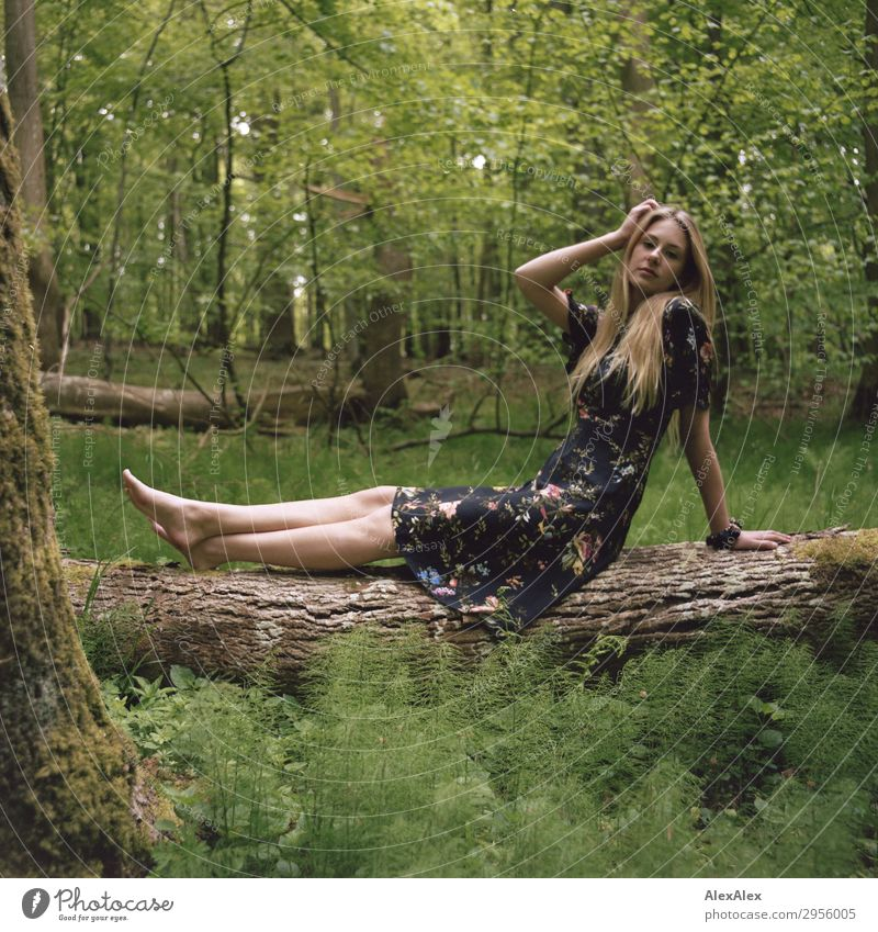 Young woman on a tree trunk in the forest Style pretty Life Trip Youth (Young adults) Legs 18 - 30 years Adults Nature Plant Beautiful weather Tree Forest Dress