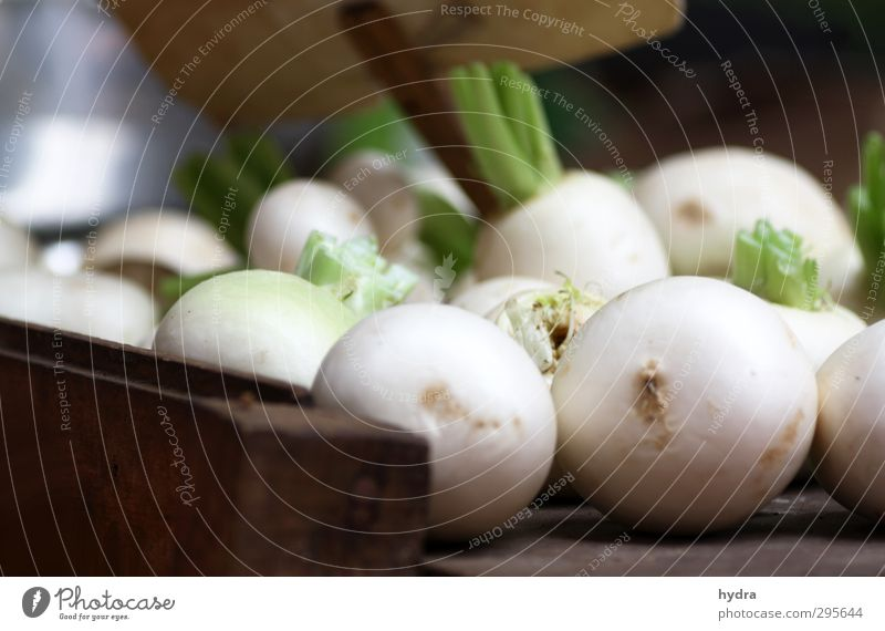 White Healthy Eating Natural Food Fresh Nutrition To enjoy Cooking & Baking Simple Round Tangy Vegetable Delicious Pure