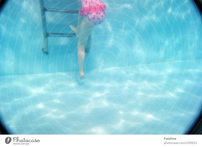 Yeah! I'm coming out! Human being Feminine Child Girl Infancy Body Skin Legs Feet Elements Water Bright Wet Blue Pink Black Swimming pool Ladder Rung