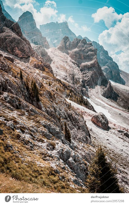 Sun in the Dolomites Vacation & Travel Tourism Trip Adventure Far-off places Freedom Mountain Hiking Environment Nature Landscape Plant Summer Beautiful weather