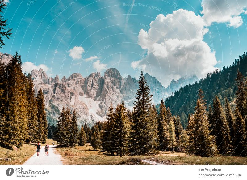 Dolomites with hikers in the foreground Adventure Hiking Beautiful weather Bad weather Fog Peak Summer Landscape Nature Environment Far-off places Freedom