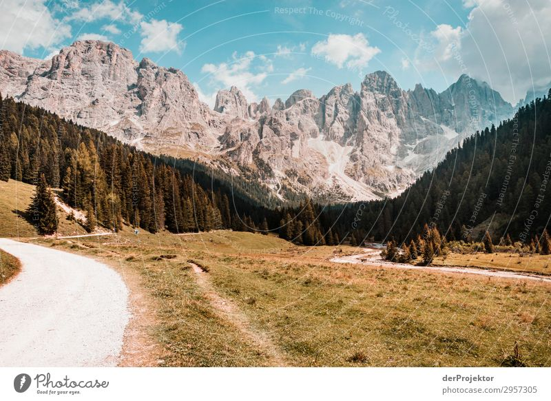 Dolomites with path in the foreground Adventure Hiking Beautiful weather Bad weather Fog Peak Summer Landscape Nature Environment Far-off places Freedom