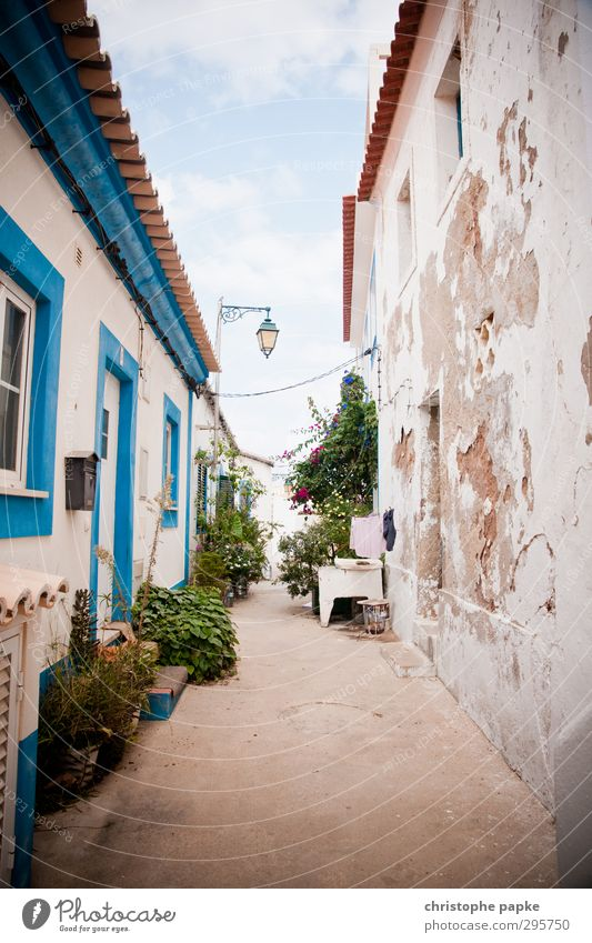Vacation & Travel Old Summer House (Residential Structure) Wall (building) Wall (barrier) Facade Poverty Summer vacation Fear of the future Alley Portugal Town Tumbledown Economic crisis Southern Europe