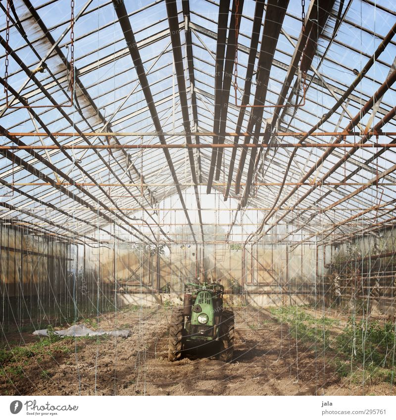 greenhouse Workplace Market garden Agriculture Forestry Sky Plant Foliage plant Agricultural crop Manmade structures Building Greenhouse Tractor Natural