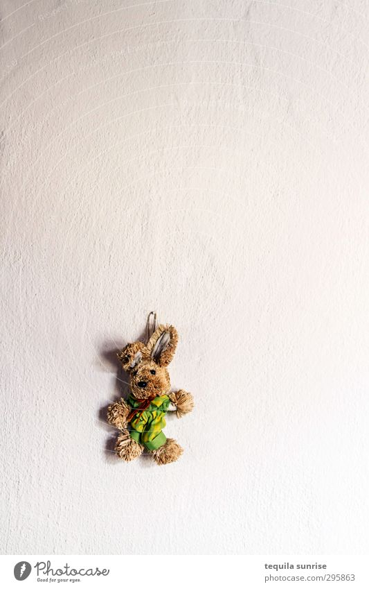 Easter over Wall (barrier) Wall (building) Rendered facade Animal Pet Hare & Rabbit & Bunny Easter Bunny Cuddly toy 1 White Colour photo Interior shot Deserted