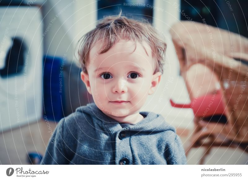 Youth photo Struwwelpeter (: Flat (apartment) Child Toddler Boy (child) 1 Human being Hair and hairstyles Looking Friendliness Beautiful Small Natural Soft Joy