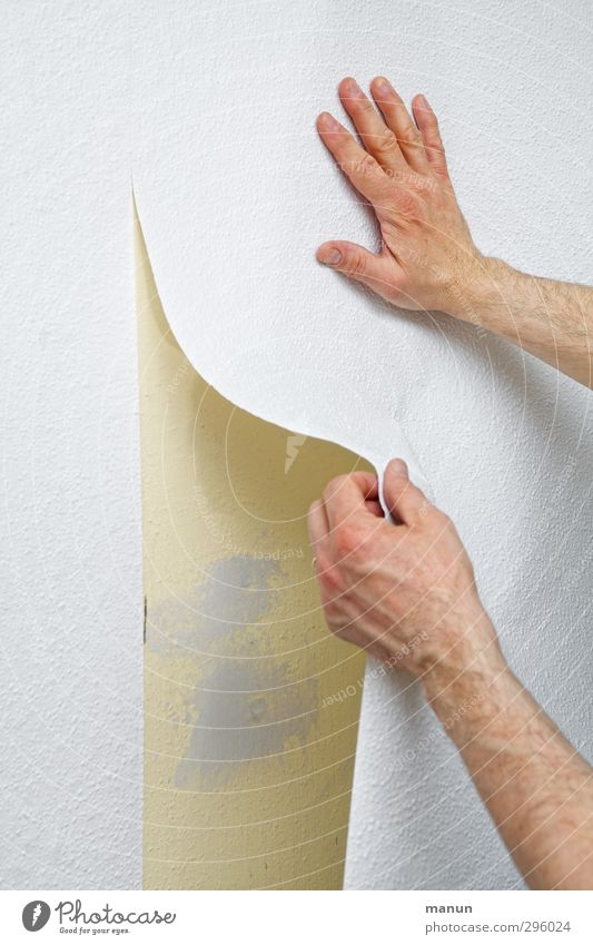 do-it-yourself Living or residing Redecorate Room Wall decoration Change of scene Wallpaper To wallpaper Handyman Home improvement Expert Professional