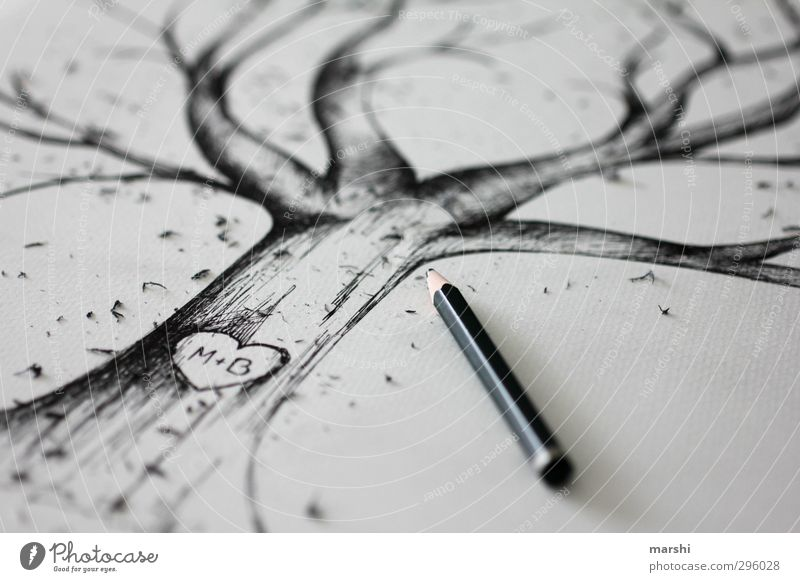Perpetuated Art Artist Painter Nature Tree Black Tree trunk Treetop Drawing Pencil Heart Lovers Emotions Wedding Structures and shapes Blur Black & white photo