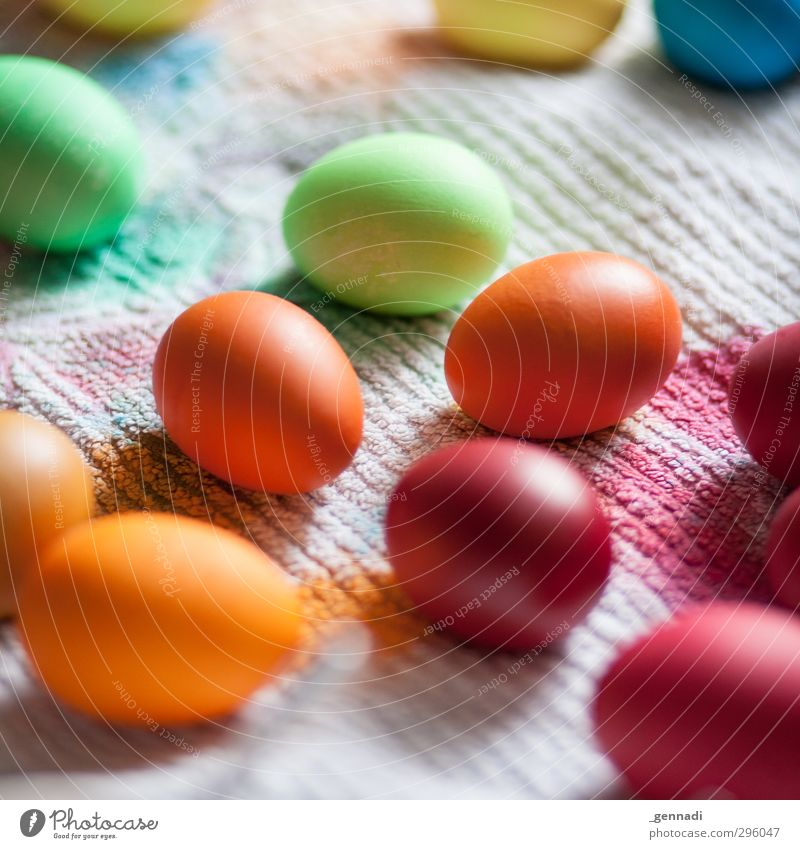 My, it's beautiful. Egg Dye Creativity Multicoloured Painting (action, work) Dyeing Easter Easter egg Towel Many Hen's egg Preparation Colour photo Detail