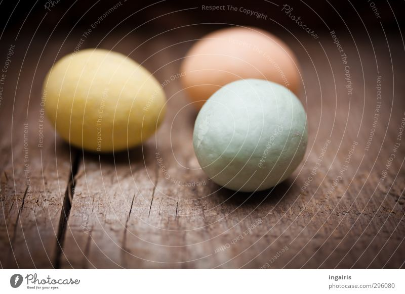 Egg search complete! Food Easter egg Wood Wooden board Near Round Blue Brown Multicoloured Yellow Pink Moody Oval Interior shot Close-up Deserted Day