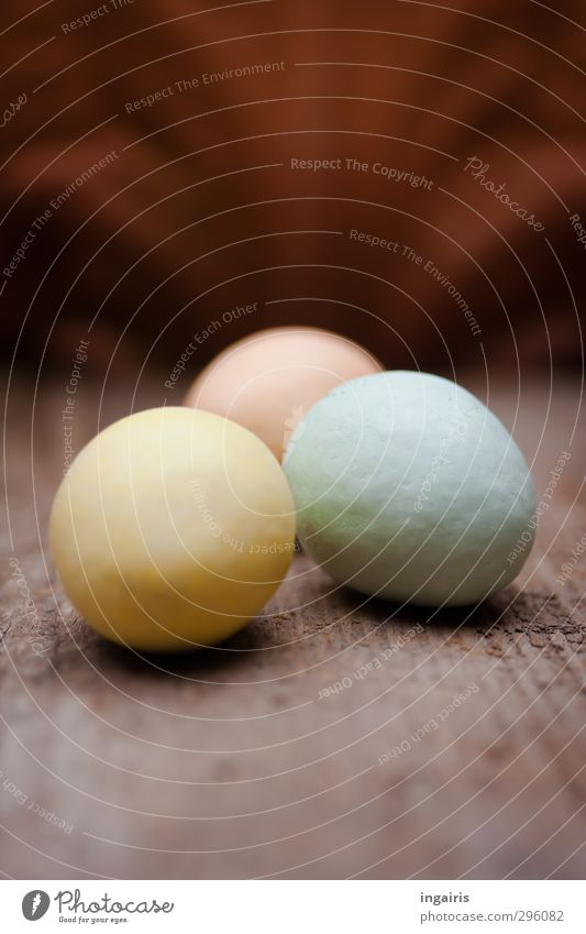 Egg search finally completed! Food Easter egg Decoration Wooden board Blue Brown Multicoloured Yellow Pink Moody Oval Colour photo Subdued colour Interior shot