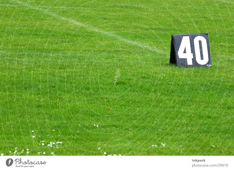Sports Line Lawn Digits and numbers 40 Felt-tipped pen