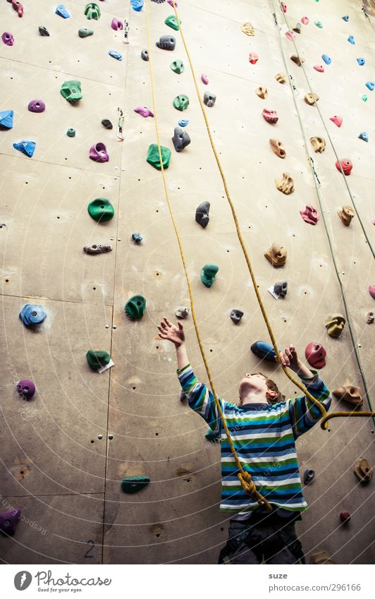 In the ropes Lifestyle Joy Leisure and hobbies Sports Climbing Mountaineering Rope Human being Child Boy (child) 1 3 - 8 years Infancy Wall (barrier)