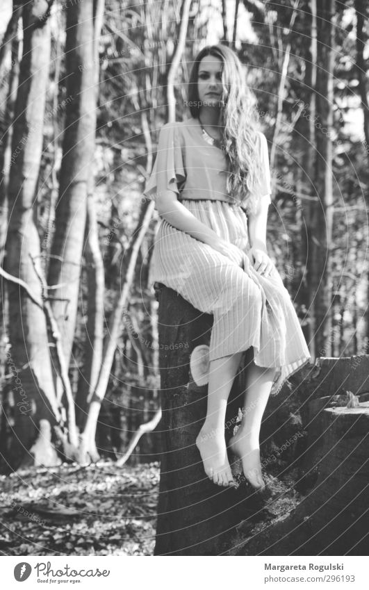 Human being Woman Nature Youth (Young adults) Tree Young woman Forest Adults Environment Meadow Feminine Hair and hairstyles 18 - 30 years Sit Growth Bushes