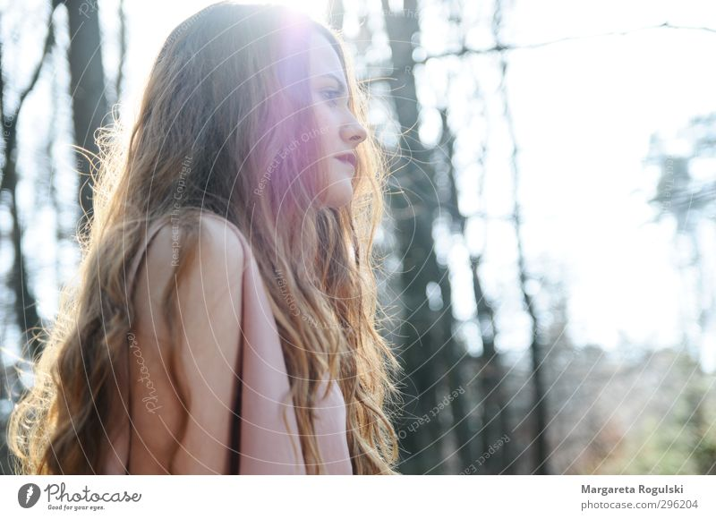 backlight Feminine Young woman Youth (Young adults) Woman Adults 1 Human being 18 - 30 years Environment Nature Spring Summer Autumn Tree Forest Dream Beautiful