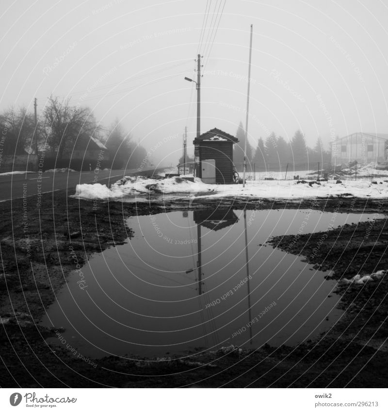 Water Tree Loneliness House (Residential Structure) Winter Dark Sadness Street Snow Ice Dirty Fog Gloomy Frost Grief Village