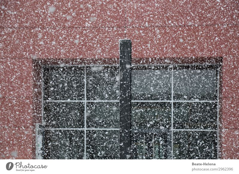 winter pointillism Nature Winter Weather Snowfall Saarbrücken Downtown House (Residential Structure) Building Architecture Wall (barrier) Wall (building) Facade