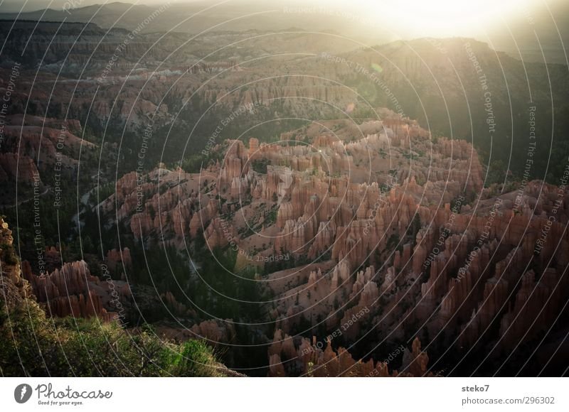 liquid light Nature Sun Sunrise Sunset Sunlight Forest Mountain Canyon Brown Orange Relaxation Expectation Calm Bryce Canyon National Park Morning Colour photo