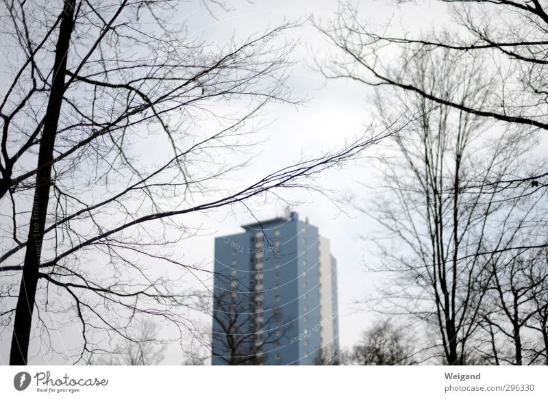 The blue Klaus from Schweinfurt House (Residential Structure) Spring Winter Town Outskirts High-rise Cry Blue Gray Colour photo Exterior shot Twilight