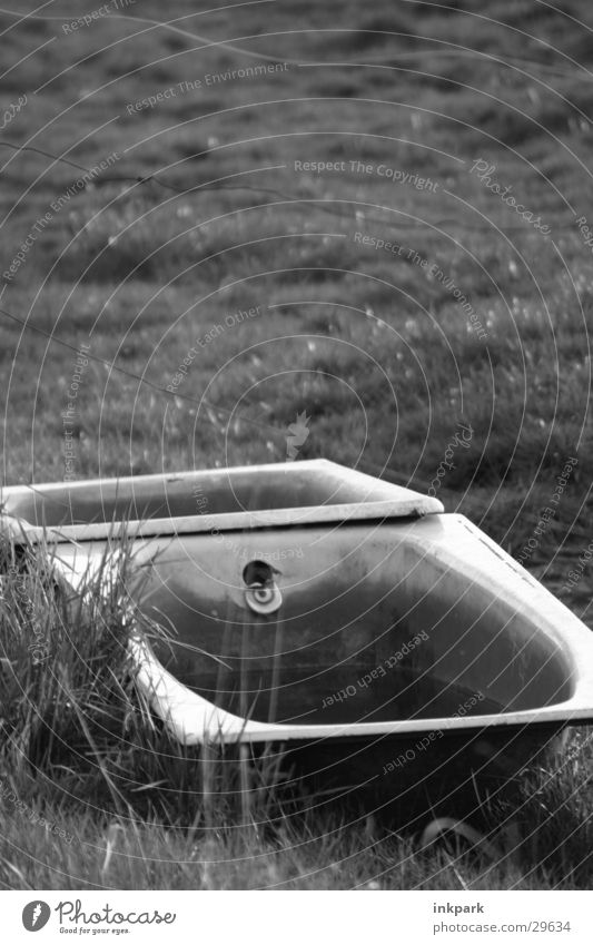 relic Bathtub Obscure Lawn Pasture Water Old Putrefy