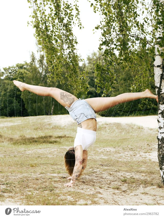 Tattooed woman doing handstand/spagat on a birch tree Lifestyle Style Beautiful Wellness Trip Adventure Young woman Youth (Young adults) Legs 18 - 30 years