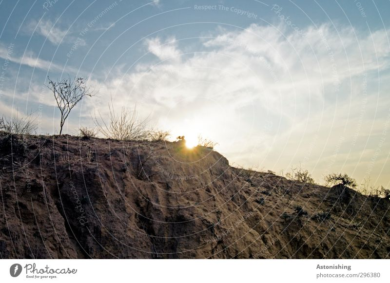 arid Environment Nature Landscape Plant Earth Sand Sky Clouds Sun Sunrise Sunset Sunlight Spring Weather Beautiful weather Warmth Drought Grass Bushes Desert