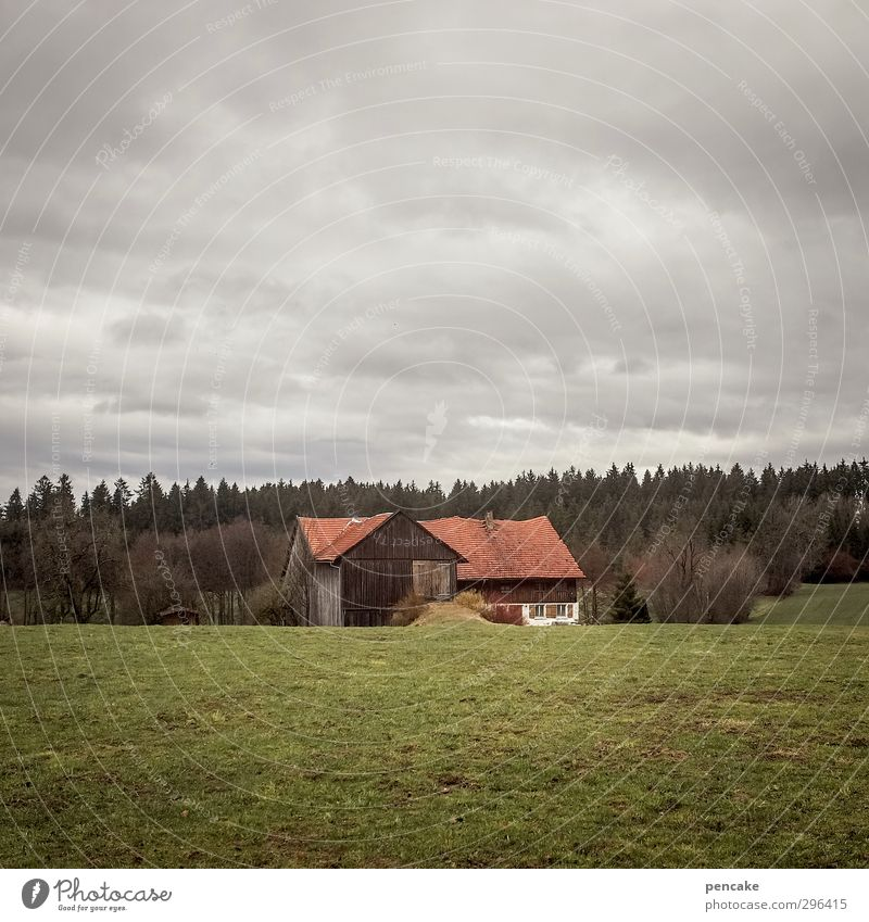 Until the beams bend Nature Landscape Elements Clouds Bad weather Tree Grass Meadow Field Forest Mountain Allgäu House (Residential Structure) farm Monument Old