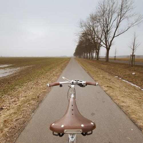 would have, would have, bicycle chain Lifestyle Leisure and hobbies Environment Nature Landscape Spring Winter Climate Weather Tree Field Transport