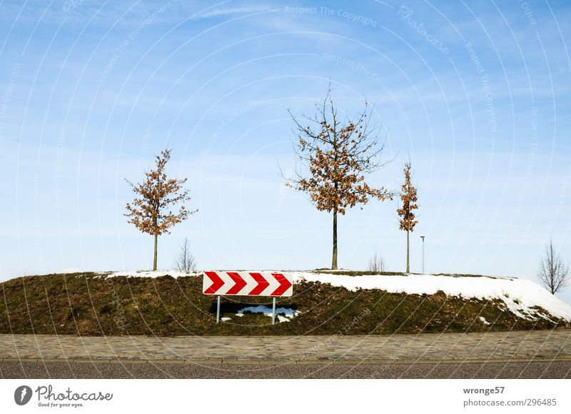Blue White Tree Red Snow Brown Bushes Traffic infrastructure Road traffic Road sign Traffic circle