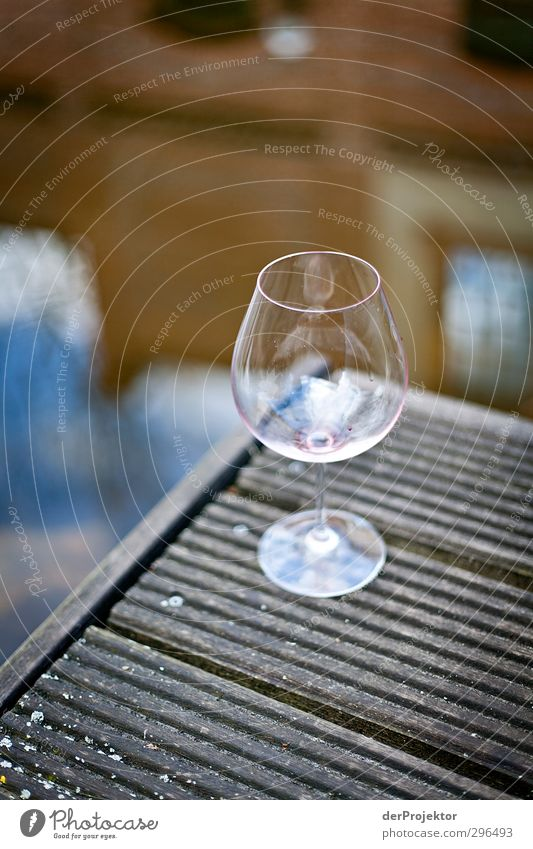 After the pleasure Beverage Drinking Alcoholic drinks Wine Glass Lifestyle Elegant Style Joy Wellness Harmonious Well-being Contentment Outskirts