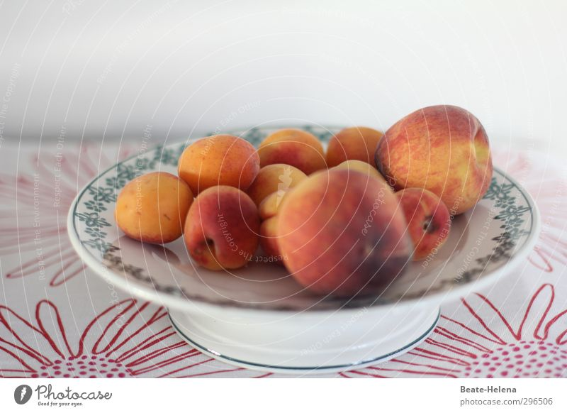 vitamin bombs Food Fruit Peach Apricot Eating Vegetarian diet Bowl Lifestyle Healthy Eating Fruit bowl Tablecloth Diet Esthetic Good Round Juicy Sweet Yellow