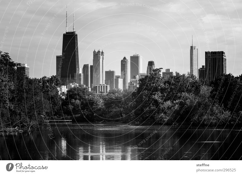 local recreation Tree Park Pond Chicago USA Town Skyline High-rise Calm Haste Oasis Black & white photo