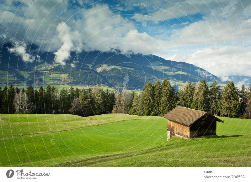 Look mer mal Far-off places Summer Mountain House (Residential Structure) Environment Nature Landscape Elements Sky Clouds Climate Beautiful weather Tree Meadow