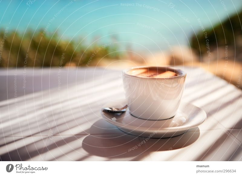 beach coffee To have a coffee Beverage Cold drink Hot drink Coffee Espresso Lifestyle Healthy Eating Vacation & Travel Beach bar Nature Summer Beautiful weather