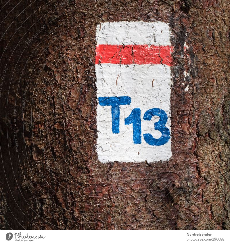 T 13 Hiking Agriculture Forestry Tree Lanes & trails Wood Sign Characters Digits and numbers Signs and labeling Beginning Colour Tourism Pictogram Footpath