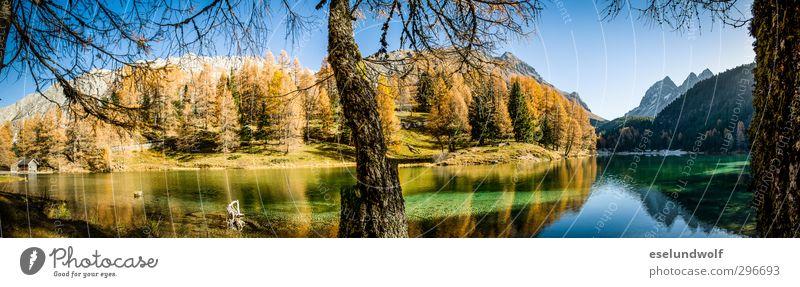Alpine lake in autumn Environment Nature Alps Mountain Transience Engadine Mountain lake Autumnal Autumnal colours Colour photo Exterior shot Deserted