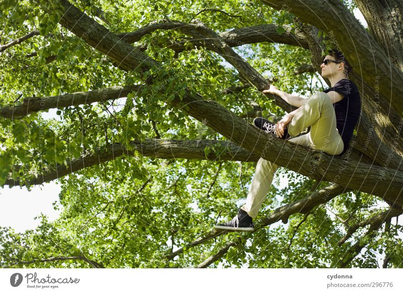 Human being Nature Youth (Young adults) Summer Tree Calm Relaxation Adults Environment Young man Life Spring Freedom 18 - 30 years Style Healthy