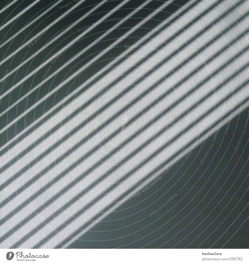 top-heavy | visual perception Wallpaper Sunlight Building Wall (barrier) Wall (building) Facade Venetian blinds Line Stripe Gray Black White Design Accuracy