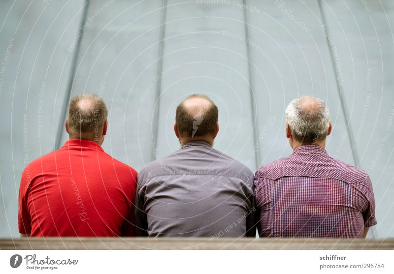 Top-heavy triumvirate. Human being Masculine Man Adults 3 Group 30 - 45 years Sit Gray Violet Red Back Bald or shaved head Hair and hairstyles Rear view