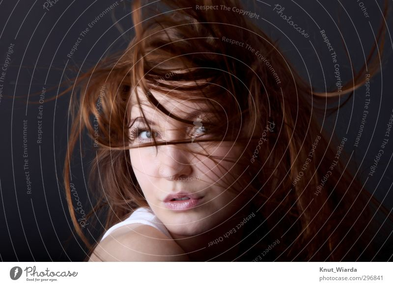 young woman with wild hair Beautiful Hair and hairstyles Face Feminine Young woman Youth (Young adults) Woman Adults Head Eyes Mouth 1 Human being 18 - 30 years