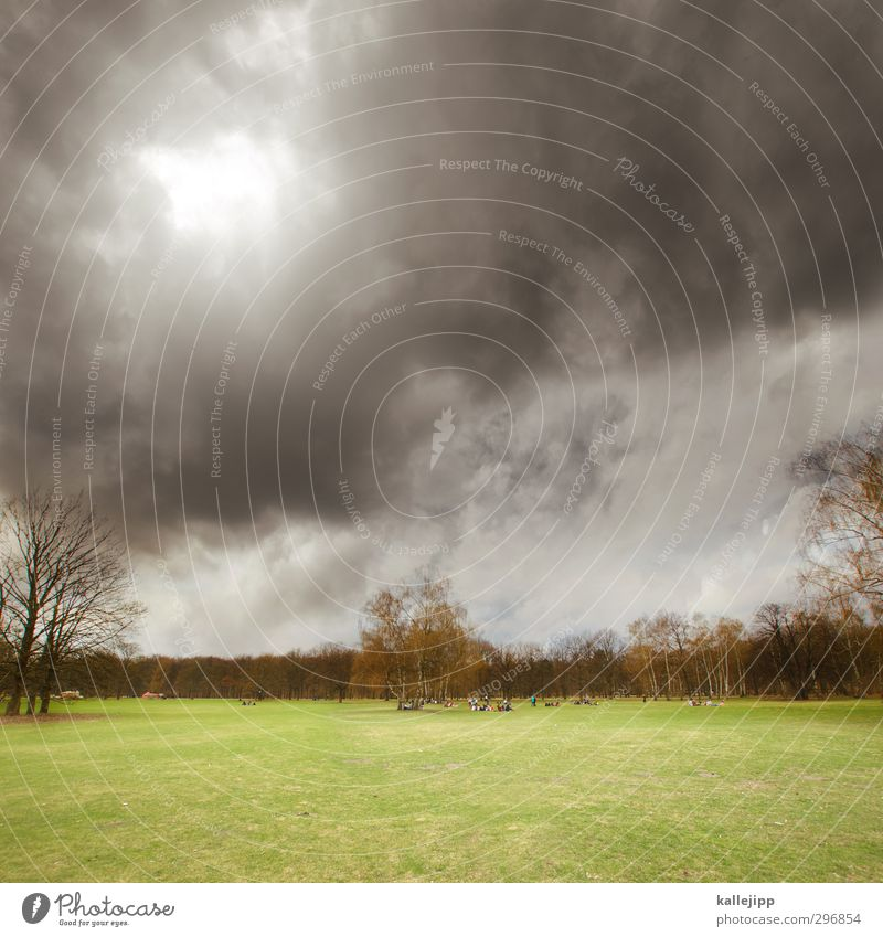 Human being Nature Green Tree Landscape Clouds Environment Meadow Grass Spring Gray Group Park Threat Lawn Storm clouds