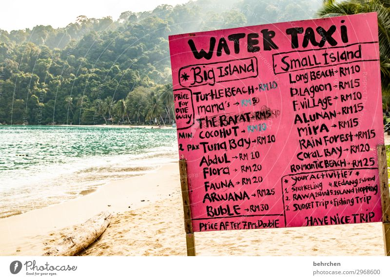 Vacation & Travel Nature Landscape Tree Ocean Relaxation Far-off places Beach Coast Tourism Exceptional Freedom Trip Waves Signs and labeling Island