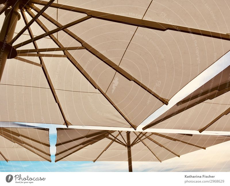 patronage Summer Summer vacation Sky Spring Blue Brown White Vacation & Travel Sunshade Weather protection Sunlight Travel photography Art Colour photo