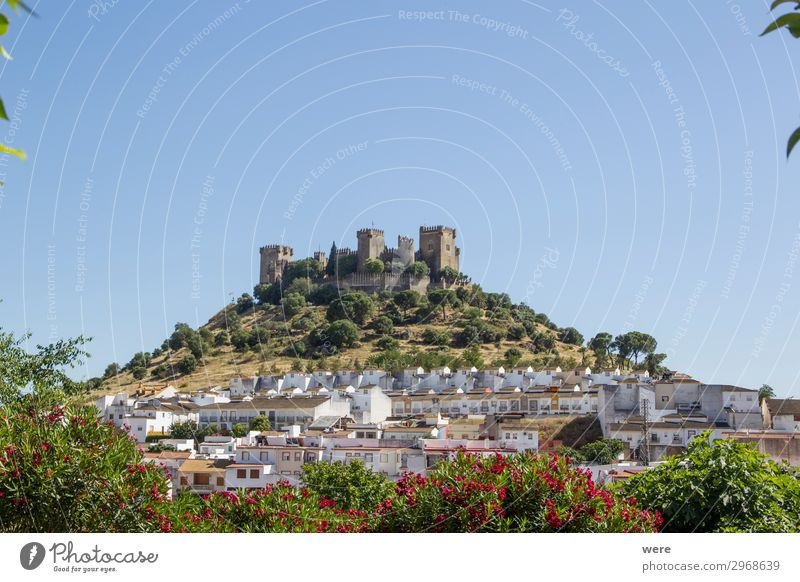 View of the medieval castle Almodovar del Rio Village Castle Old Historic Tradition Past Almodoyar del Rio Andalucia Cordoba fortress holiday romantic