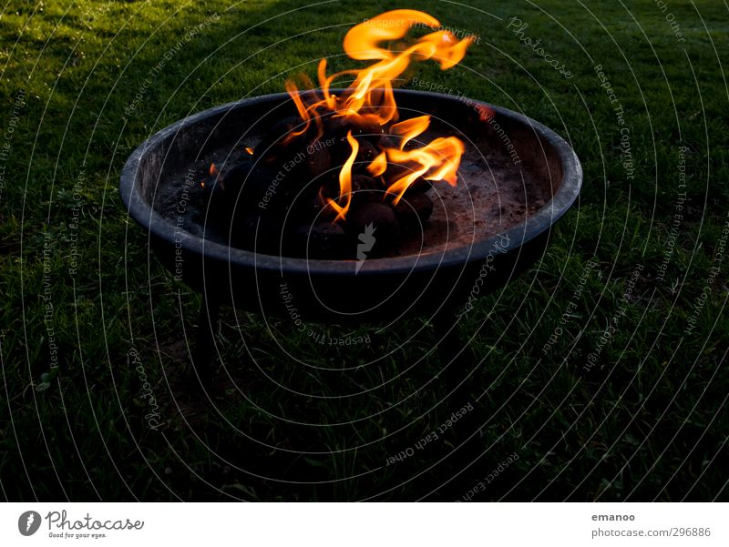 Nature Joy Black Yellow Dark Warmth Grass Eating Park Gold Leisure and hobbies Nutrition Fire Round Hot Barbecue (event)