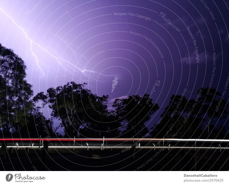 Holterdipolter | flashed Nature Storm clouds Night sky Bad weather Thunder and lightning Lightning Tree Transport Motoring Street Car Driving Rebellious Speed
