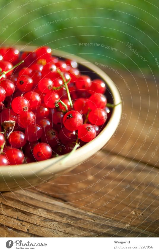 Life Eating Garden Food Fruit Nutrition Fragrance Organic produce Bowl Vegetarian diet Slow food