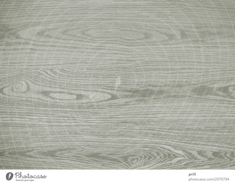 wooden surface Grain Flat (apartment) Decoration Furniture Nature Forest Wood Line Old Gray Arrangement Quality Wood grain Texture of wood wood surface board